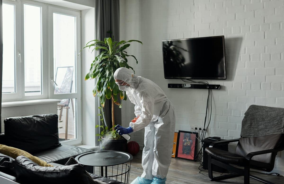 Bed Bug Killer Sprays